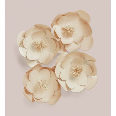 Darice Natural Paper Flower Wall Decor Kit Orted Sizes 4ct