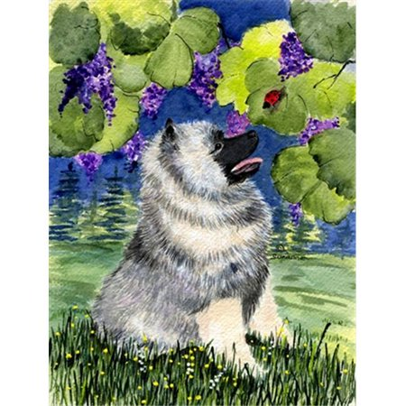 Carolines Treasures SS8249CHF Keeshond Canvas Flag - House Size, 28 x 40 in. - image 1 de 1