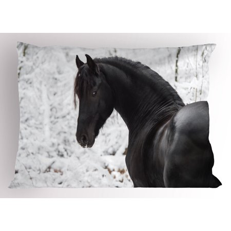 - Equestrian Pillow Sham Black Friesian Sport Horse Portrait on a Snowy Winter Background Novelty Picture, Decorative Standard Queen Size Printed Pillowcase, 30 X 20 Inches, White, by Ambesonne