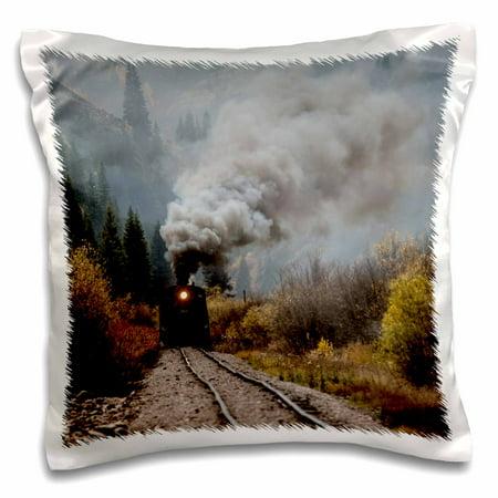 3dRose Colorado, Silverton. Durango and Silverton Narrow Gauge train. - Pillow Case, 16 by 16-inch ()