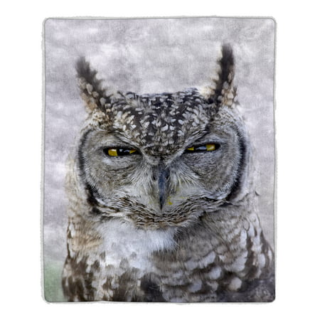 Sherpa Fleece Throw Blanket - Owl Print Pattern, Lightweight Hypoallergenic Bed or Couch Soft Cozy Plush Blanket for Adults and Kids by Lavish Home