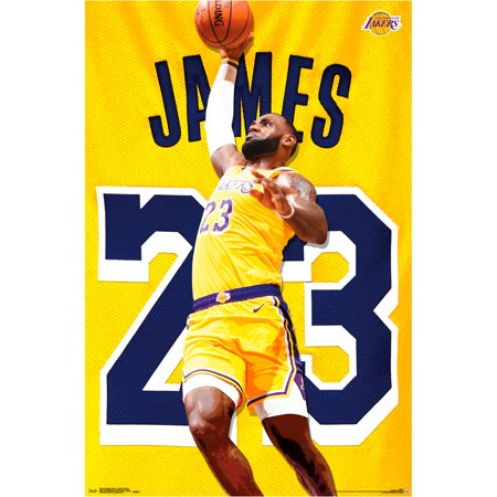 LeBron James Los Angeles Lakers 22.4'' x 34'' NBA Players Poster - No Size (Lebron James Halloween Mask)