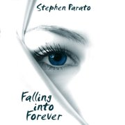 Falling Into Forever - Audiobook