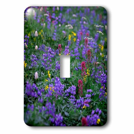 3Drose Summer Flowers Send Forth A Riot Of Color  Mt  Rainier Np  Washington  Single Toggle Switch