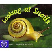 Rigby Flying Colors : Individual Student Edition Red Looking at Snails