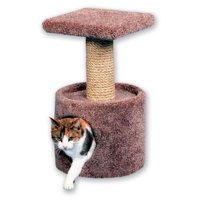 Beatrise 24 in. Cat Condo
