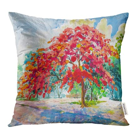 ARHOME Watercolor Landscape Original Paintings Red Orange Color of Peacock Flowers Hand Pillow Case Pillow Cover 18x18 inch Throw Pillow Covers