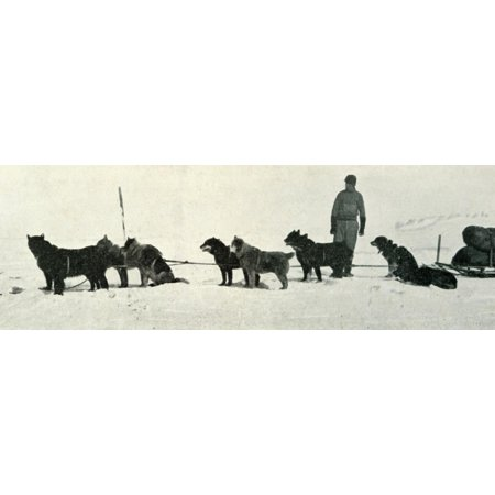 'Dogs with Stores About to Leave Hut Point', c1911, (1913) Print Wall Art By Herbert (Hut 8 Clothing Store)