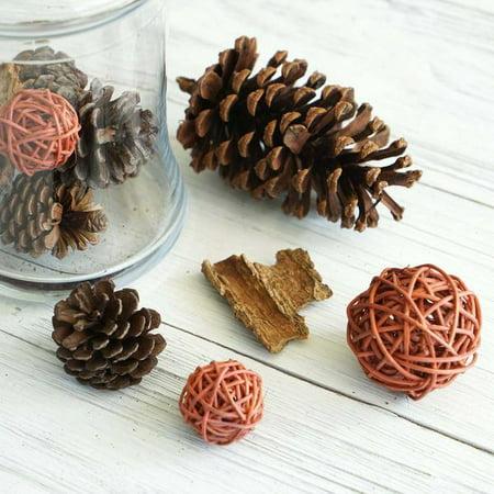 Assorted Natural (Efavormart 13 Pack Natural Pine Cones Rattan Balls and Barks Assorted Potpourri Vase Fillers Bowl DIY Table Decorations )