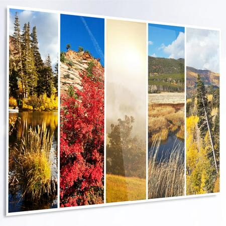 Design Art Autumn In Sierra Nevada Collage Photographic Print On Metal