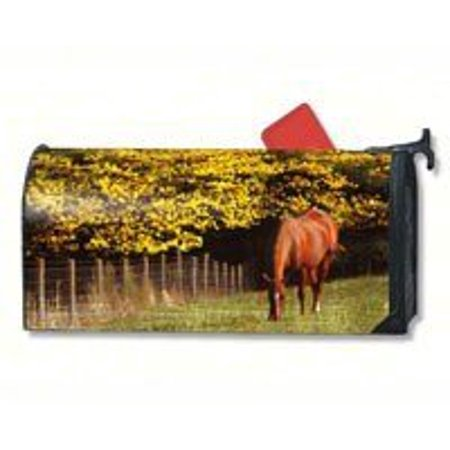 Magnet Works Mail01030 Out To Pasture Mail Wrap