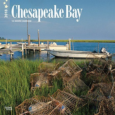 chesapeake bay online hookup & dating Mingle2 is the place to meet chesapeake bay singles there are thousands of men and women looking for love or friendship in chesapeake bay, maryland our free online dating site & mobile apps are full of single women and men in chesapeake bay looking for serious relationships, a little online flirtation, or new friends to go out with.