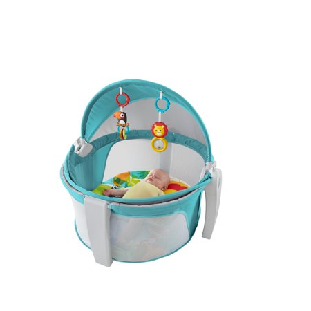 Fisher-Price On-The-Go Baby Dome – BrickSeek 5de0bef2c1b