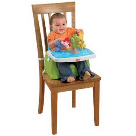Fisher price discover 39 n grow busy baby booster seat for Silla fisher price