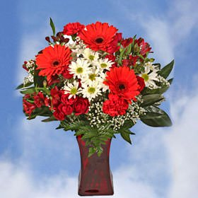Globalrose 18 Fresh Cut Flowers Valentines Day Bouquet With Vase   Garden Of Love Boquet   Fresh Flowers Wholesale Express Delivery