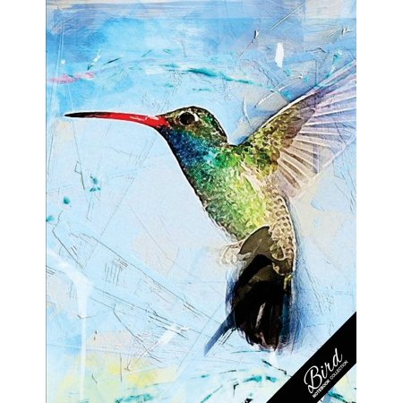 Bird Notebook Collection: Hummingbird Abstract Art, Writing Composition Notebook/Journal/Diary Gift Idea 100 Pages, 8.5 X 11 (Paperback)