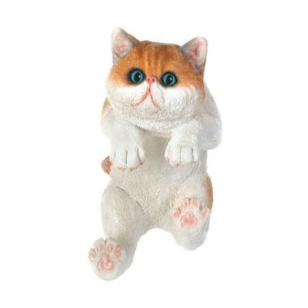 Tom Lehman Memorabilia - Memorabilia Climbing Big-Eyed Kitten