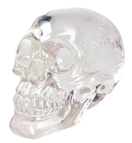 Pirate Cave Tomb Treasure Clear Acrylic Resin Translucent Skull Decorative Figurine