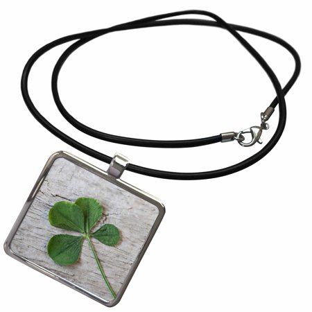 3dRose Dried Four Leaf Clover Close Up - Necklace with Pendant (ncl_274772_1) ()