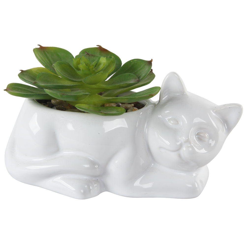 Mainstays Ceramic Cat Planter Succulent