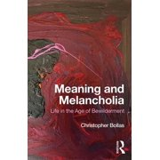 Meaning and Melancholia : Life in the Age of Bewilderment