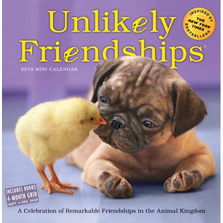 - Unlikely Friendships Mini Wall Calendar 2019 (Other)