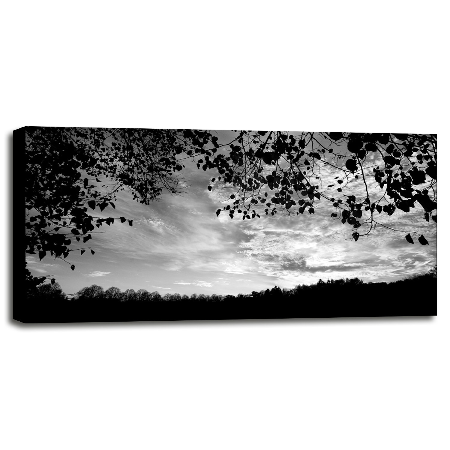 Bright sundown bx20 by harold silverman landscapes in a canvas stretched in maple frame