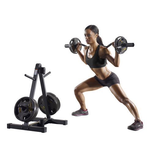 goldu0027s gym weight plate and barbell storage rack