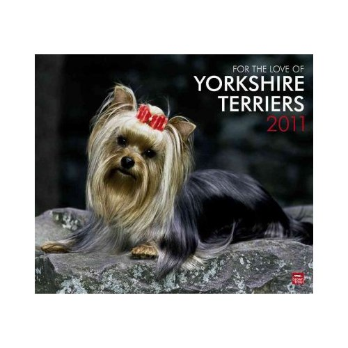 For the Love of Yorkshire Terriers 2011 Calendar