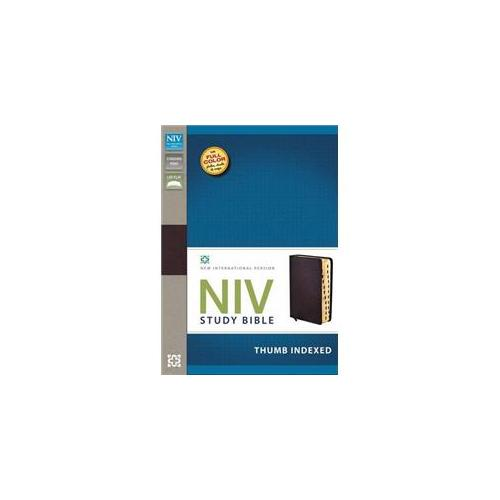 NIV Study Bible-Burgundy Bonded Leather Indexed