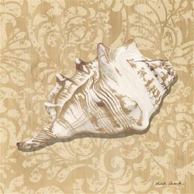 Roaring Brook Art PDXRB9940NCSMALL Shell Study III Poster Print by Nikita Coulombe, 12 x 12 - Small - image 1 of 1