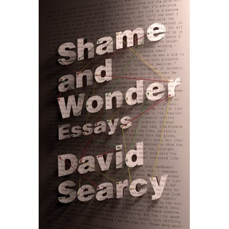 Shame and Wonder : Essays