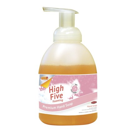 High Five Foaming Premium Hand Soap, 16 oz Pump ()