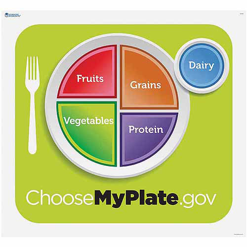 Learning Resources Healthy Helpings-A My Plate Activity Mat