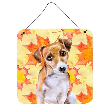 Jack Russell Terrier No.2 Fall Wall or Door Hanging Prints, 6 x 6 (Jack Russell Terrier For Sale In Ny)