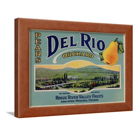 Fruit Crate Labels: Del Rio Orchard Pears; Rogue River Valley Fruits Framed Print Wall Art