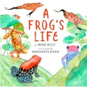 A Frog's Life (Hardcover)