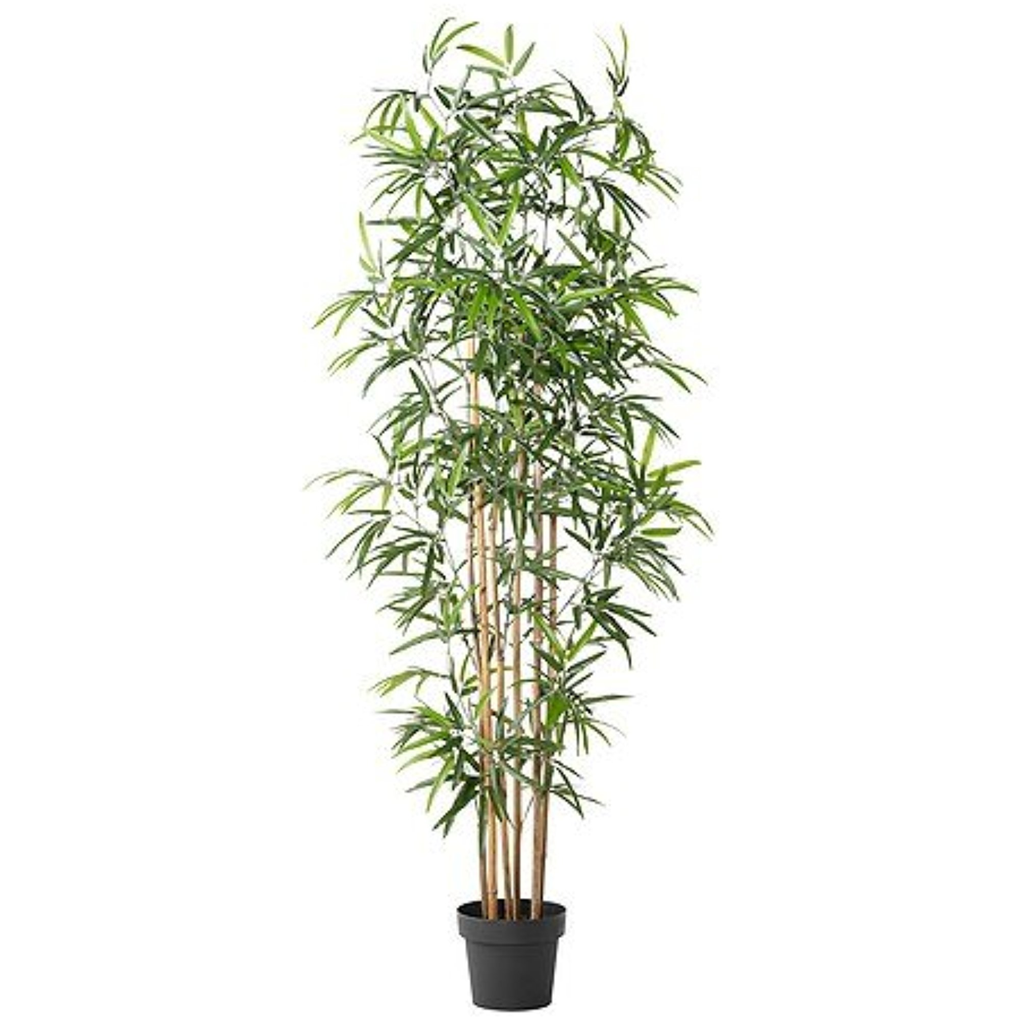 "Ikea Artificial potted plant, bamboo 8 1/4 "" 626.262020.1218"