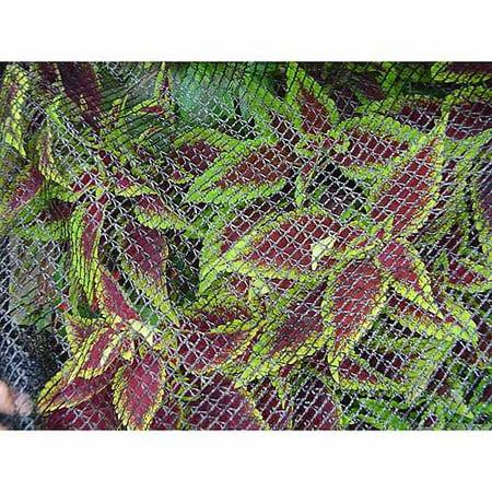 Dewitt Bird Barricade Protective Plant Netting, 14' x