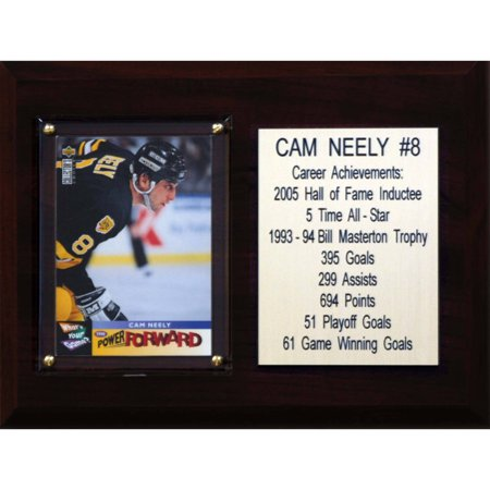 C&I Collectables NHL 6x8 Cam Neely Boston Bruins Career Stat Plaque