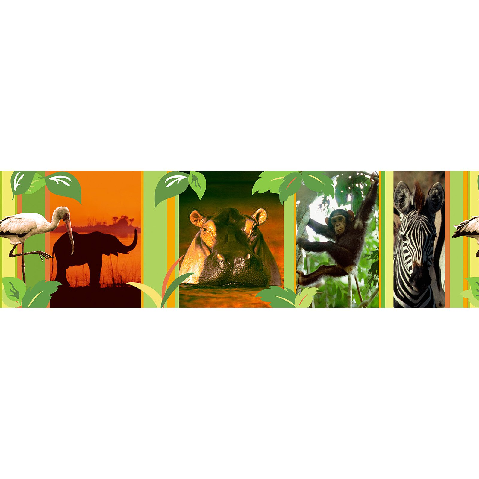 Brewster Globe Animal Planet Wall Border