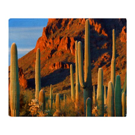 CafePress - Arizona Desert Saguaro Cactus And Mo - Soft Fleece Throw Blanket, 50