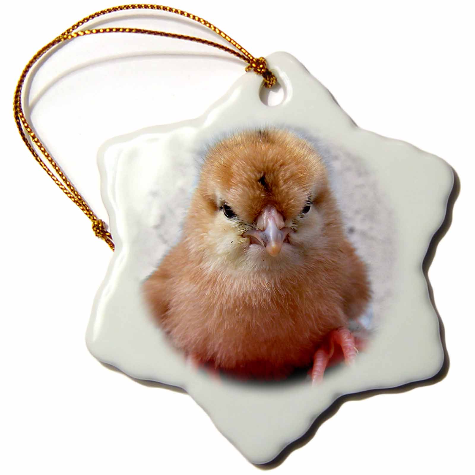 3dRose Silkie Chicken Chick in hand photograph, Snowflake Ornament, Porcelain, 3-inch