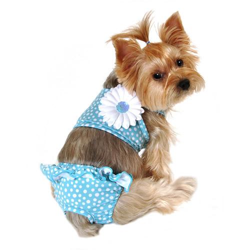 Simplydog, Blue Scatter Dot Pull-on Swim