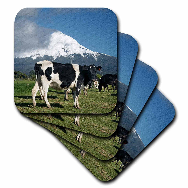 3dRose Dairy Cows, Farm animals, Taranaki, New Zealand-AU02 DWA4998 David Wall, Soft Coasters, set of 8 by 3dRose