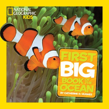 National Geographic Little Kids First Big Book of the Ocean (Kids Big Book)