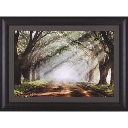 Art Effects Evergreen Plantation by Mike Jones Framed Photographic ...