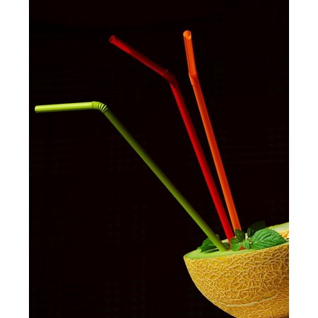LAMINATED POSTER Cantaloupe Juice Muskmelon Melon Straws Poster Print 24 x 36