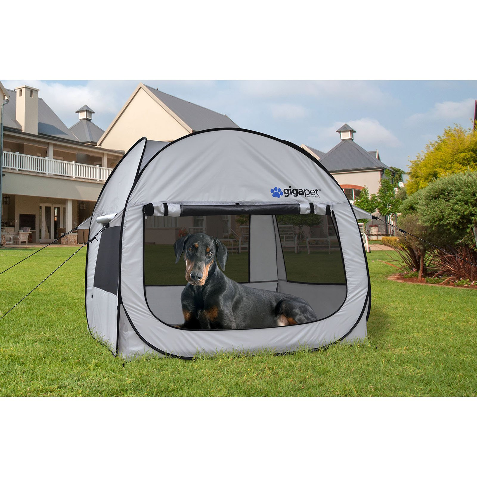 Pop-Up Critter Cabin I Pet Tent  sc 1 st  Walmart & Pop-Up Critter Cabin I Pet Tent - Walmart.com