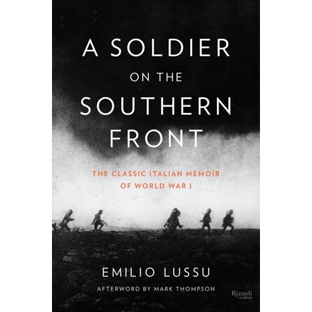 A Soldier on the Southern Front : The Classic Italian Memoir of World War (Memoirs Classic 4 Centerset)